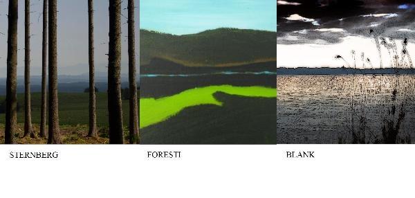 Landschaft – Drei künstlerische Positionen, 2014